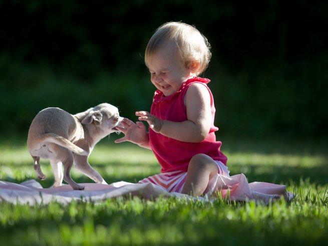 Девочка в один год сидит на траве и играется с собачкой