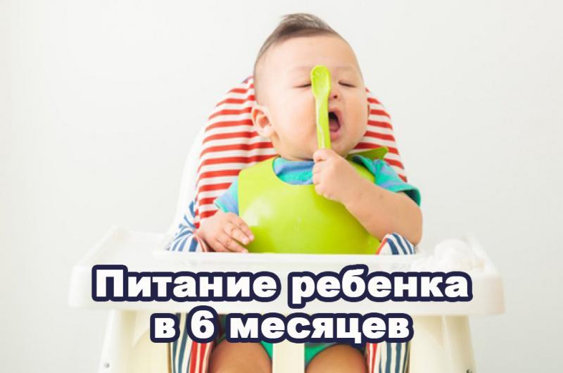 Какие овощи давать грудничку