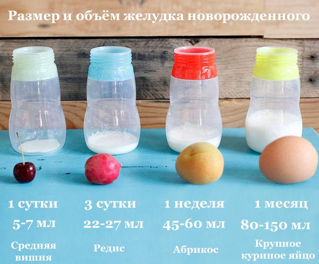 Объем и размер желудка новорожденного
