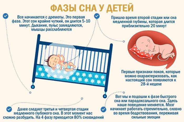 Фазы сна у младенца