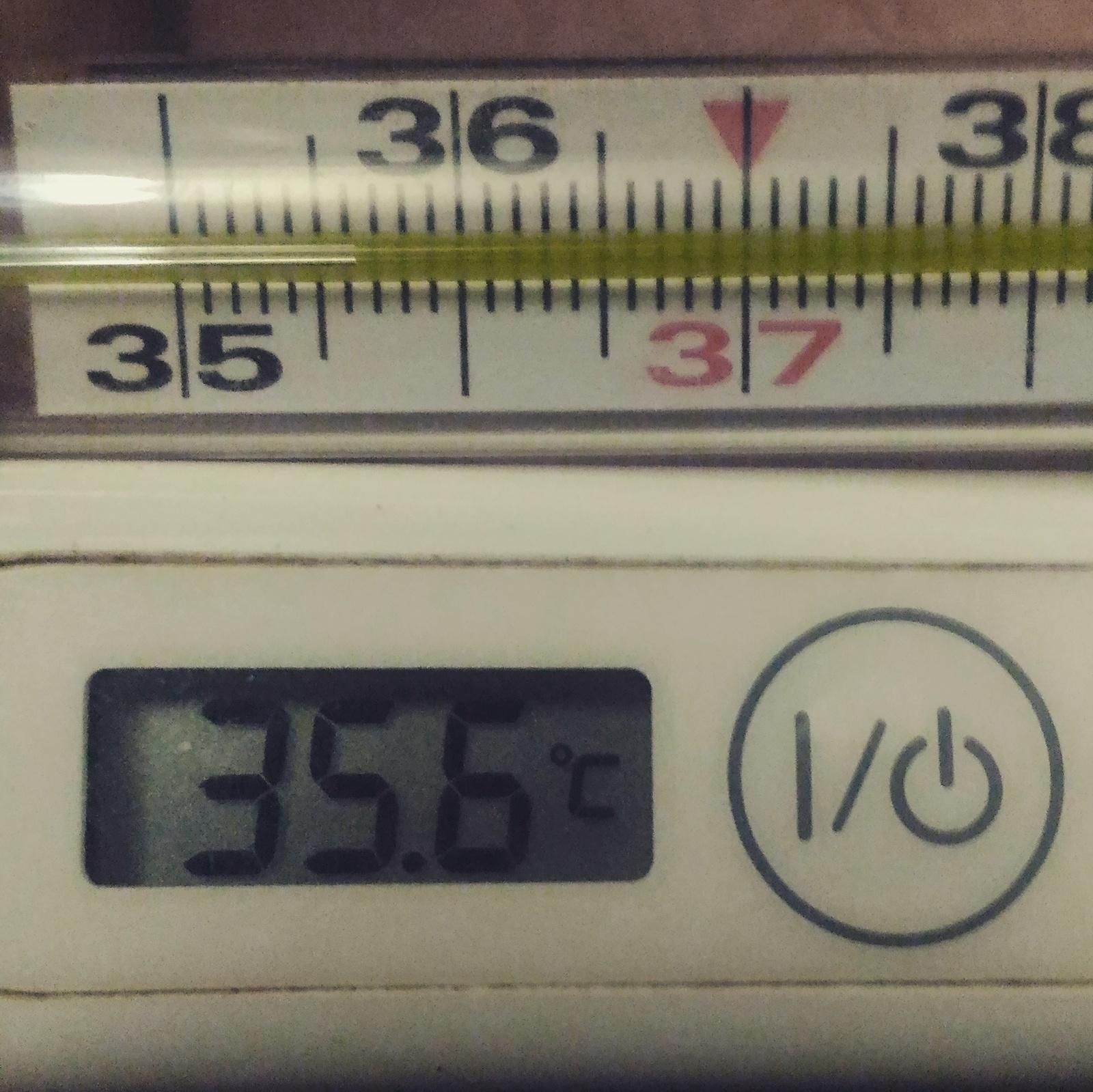 Термометры показывают 35 градусов
