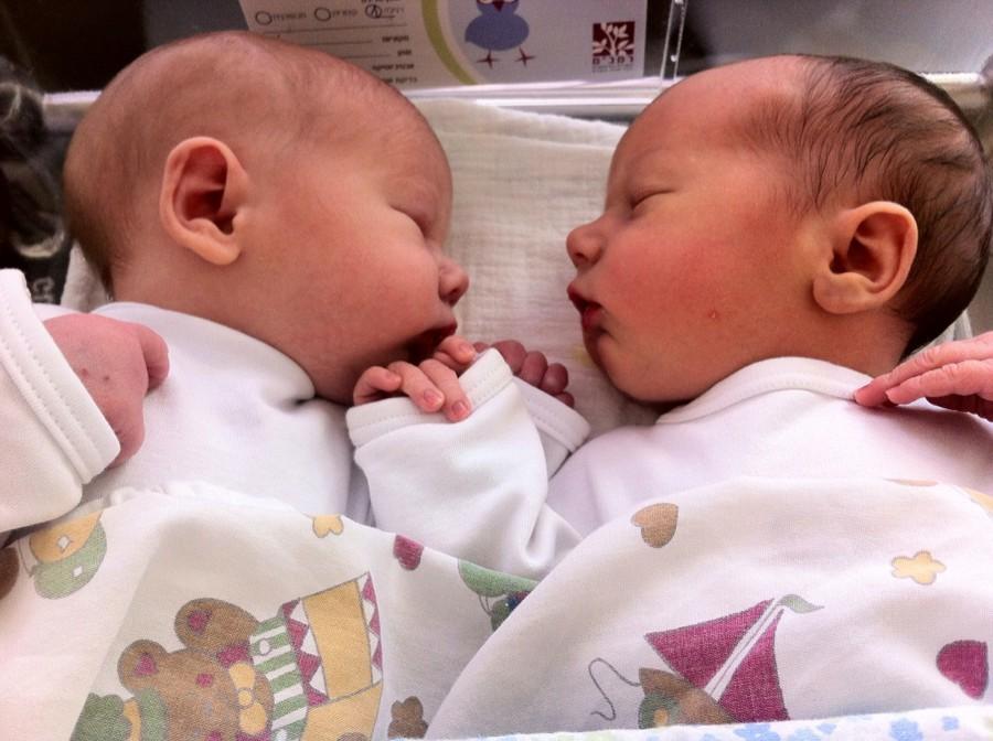 Новорожденные двойняшки в роддоме