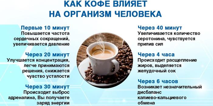 Воздействие кофе на взрослый организм