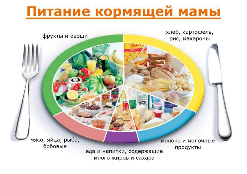Кормящая мама не должна ограничивать себя в еде