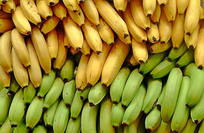 Спелость тропического плода