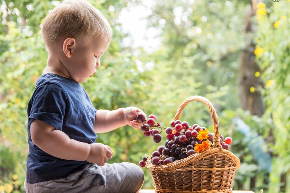 Мальчик и виноград