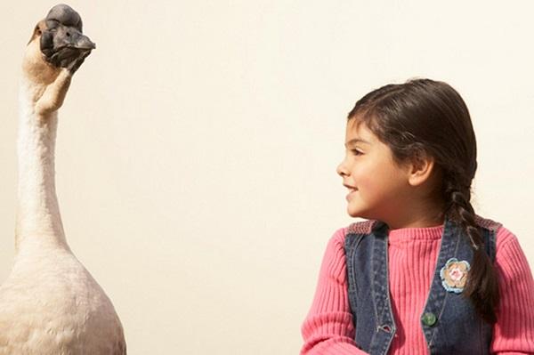 Гусиная кожа у детей – явление нередкое