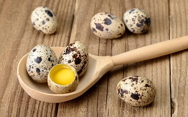 Перепелиные яйца обогащают детский рацион