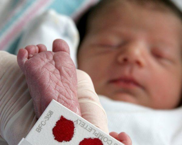 Пятка новорожденного и плашка с кровью