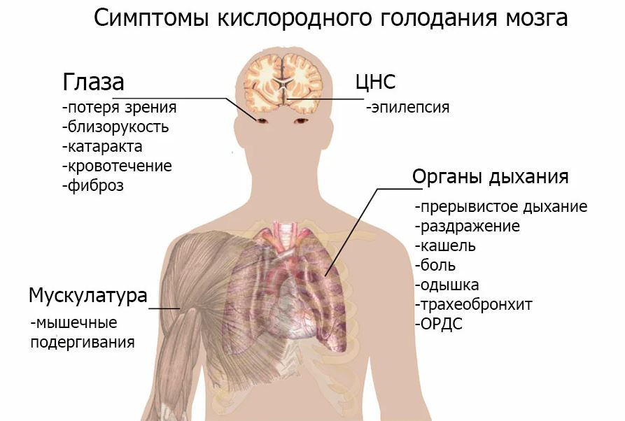 Симптоматика гипоксии головного мозга