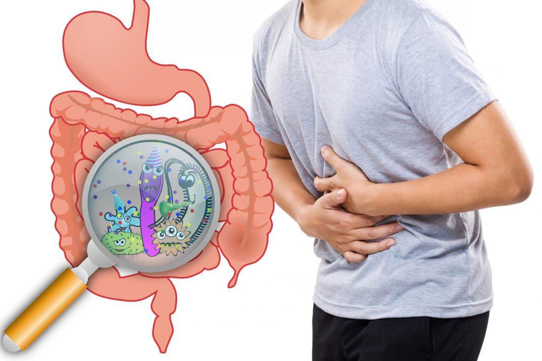 При нарушении баланса бактерий в желудке наблюдаются различные симптомы