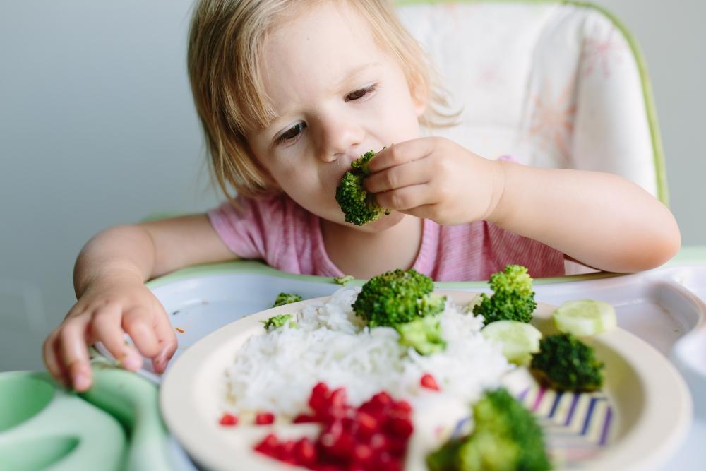 Питание ребенка после антибиотиков и поноса thumbnail