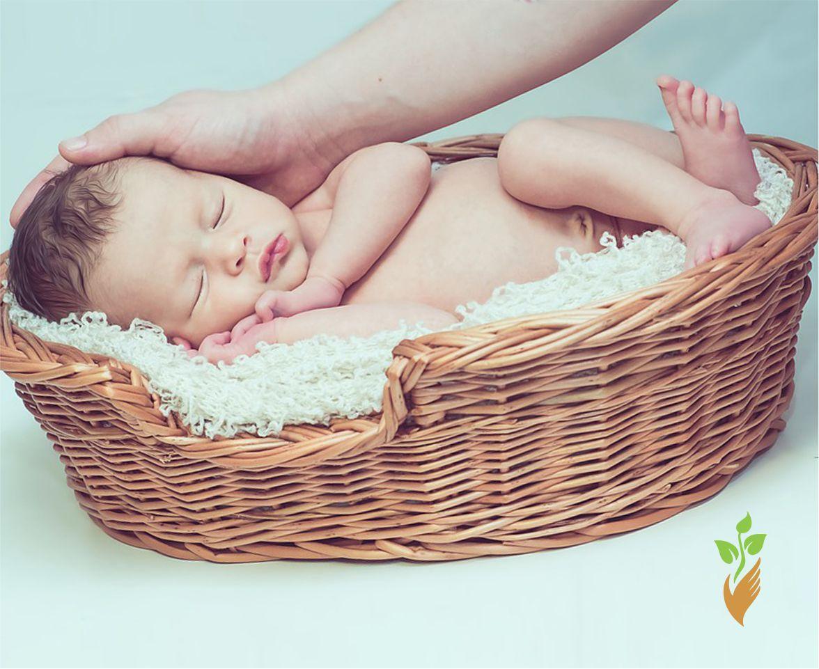 Младенец в корзине