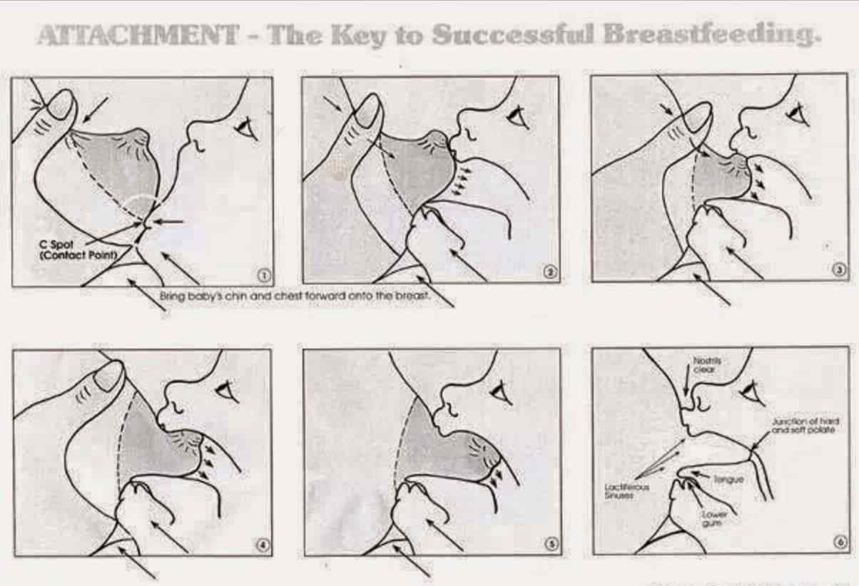 Как прикладывать к груди