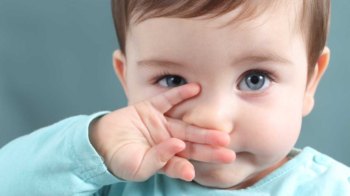 Нос – орган, который обязательно надо беречь