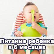 Питание малыша в 6 месяцев