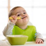 Прикорм в радость